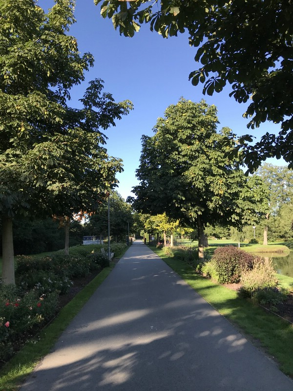 stadtpark_9